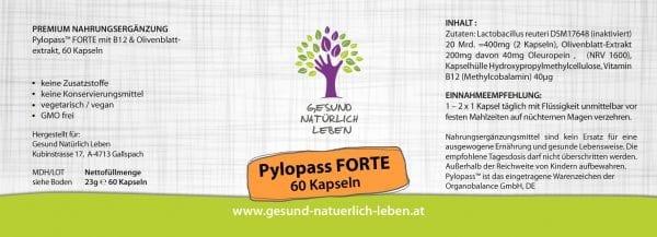 Pylopass 60K